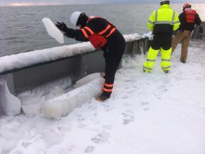 arctic-12
