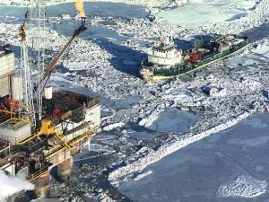 arctic-10